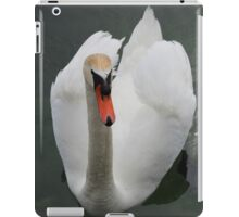 Swan Swimming, White & Graceful - Schwäne Photography iPad Case/Skin