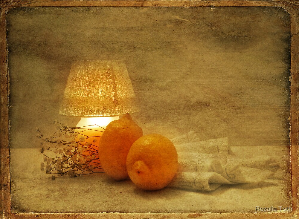 Citrons by Rozalia Toth