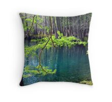 Spring at the Spring Throw Pillow