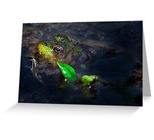 Kermit at Mer Bleue Greeting Card