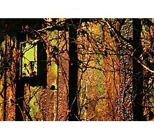 Rusty and Crusty Colors Photographic Print