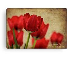tulipes rouges Canvas Print