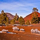 Sunset Crater National Park - Arizona by Melissa Seaback