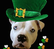 Happy St. Patrick's by Zdogs