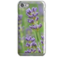 Lavender from Brittany iPhone Case/Skin