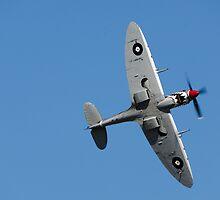 Spitfire by wolfcat