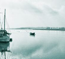 Misty Morning ~ Topsham, Devon by Susie Peek