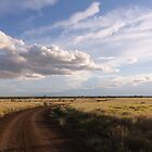 Afternoon Track * Ilfracombe Queensland by Deon Mackay