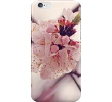 In pink iPhone Case/Skin