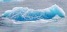 Alaskan Ice Cube by Neville Gafen