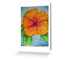 Suffolk park hibiscus Greeting Card