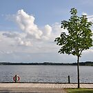 Swedish Summer Lake by Hilda Rytteke