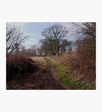 A walk through Danes Dyke Photographic Print