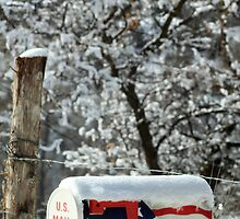 Patriotic Snow Covered Mailbox by DonnaBoley