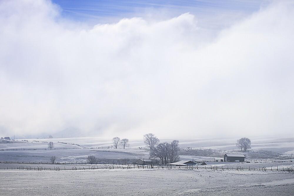 A Blue Sky Promise Over Snowy Countryside by DonnaBoley