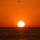 PIER SUNSET by gracestout2007