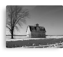 Planted in the Snow Canvas Print