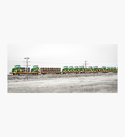 Trained Deere Photographic Print