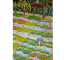 Tulips In The Capital Of Tulips Photographic Print