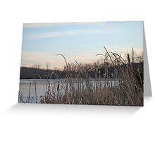 Rushes and Ice - Skymount Pond, PA Greeting Card