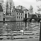 Brugge by Tony Hadfield