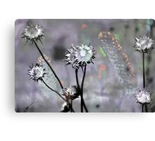 Botanical Abstract in Pastel IX Canvas Print