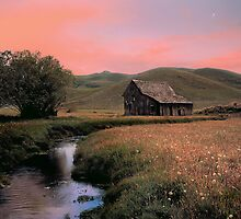 Old Barn in Pioneer Mountains by Leland Howard