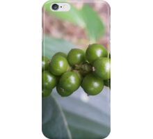Green Pepper iPhone Case/Skin