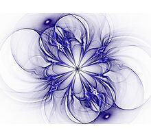 Blueprint of a Bloom Photographic Print
