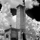 Confederate monument at The Old Grey Cemetery, Knoxville, TN - in Infrared by ©  Paul W. Faust