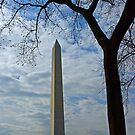 Washington Monument by julie08