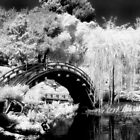 Japanese Garden Bridge - Infrared by   Paul W. Faust