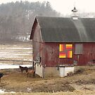Quilted Horse Barn by lorilee