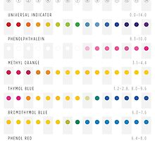 Colours of pH Indicators by Philip Seifi