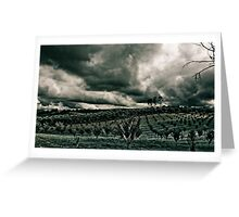 Vineyard Drama Greeting Card
