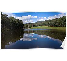 Stanley Forest Waterhole Poster