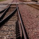 Trains - Converging Tracks Or Making Choices by Buckwhite