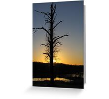Silhoutte on The Tree Greeting Card