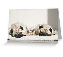 Let Sleeping Pugs Lie Greeting Card