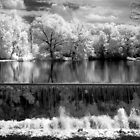 Grist Mill Pond in Infrared by ©  Paul W. Faust