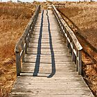 Mavillette Beach - Boardwalk by David Davies