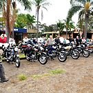Line up at Classic Motorbike Rally Cundletown. by Heabar