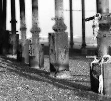 Pier Legs by jimclark