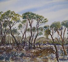 Coorong Trees by Kay Cunningham