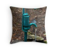 Water Pump Fountain Throw Pillow