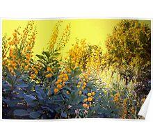 Gold-drenched landscape Poster