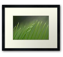 unruly / ruly Framed Print