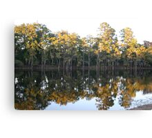 cypress trees mirror immage Canvas Print