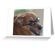 Goofy dog with sunglasses and smile Greeting Card