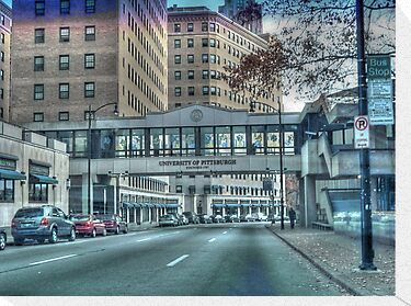 University of Pittsburgh by vigor